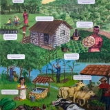 Improve Your Life by Planting Beneficial, Fast Growing Trees - illustration reproduction for Haitian educational charity