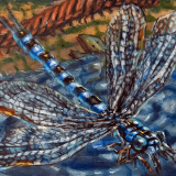 "Meganeura (Paleozoic 8), July 2020, oil on canvas, 10x8in. <a href=""http://bruesselbach.com/?page_id=1342"">Paleofacture</a>"